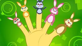 The Finger Family Rabbit Family - Finger Rhymes For Children