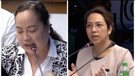 Ubial: Garins lawmaker-husband asked me to buy more Dengvaxia vaccine during budget hearing