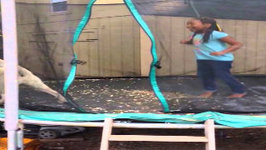 Yellow Lab Loves Jumping On The Trampoline