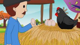 Higgledy Piggledy My Black Hen