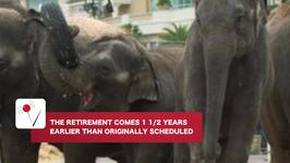 Circus Elephants Retiring Early