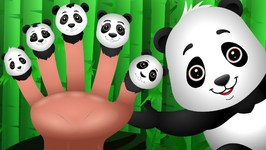Panda Finger Family  ChuChu TV Animal Finger Family Songs & Nursery Rhymes For Children