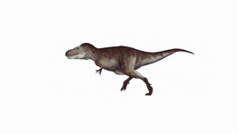 How Did The T-Rex Get Its Name?