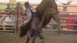 Wacey -Bull Riding